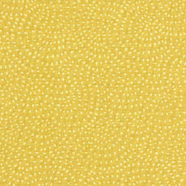 DASHWOOD_STUDIO_TWIST_1155_GOLD